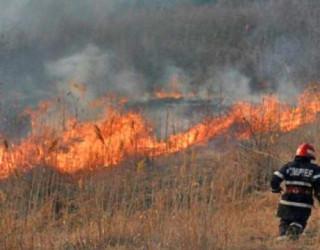 Incendiu pe zeci de hectare în județul Argeș!